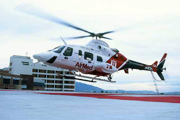 The Bell 430 entered service in 1996 and over 123 are in operation.