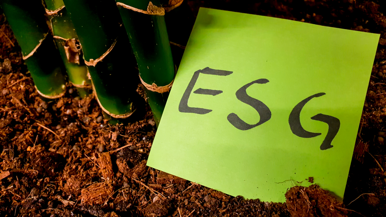 Climate change the most material ESG issue